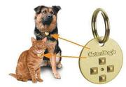 Pet Protector - the BEST flea and tick protection