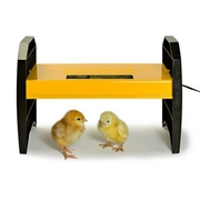 Top Quality Chicken Brooder Box - Top Knot Poultry Supplies