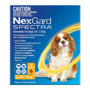 Nexgard Spectra for Small dogs - 3.6 to 7.5 kg