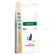 Buy Royal Canin Feline Dental Food S/O from vetsupply.com.au