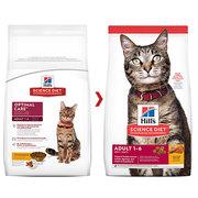 Buy Hills Science Diet Adult Chicken Dry Cat Food Online