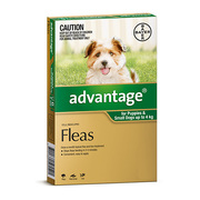 Buy Branded Advantage for Dogs and Cats online at Lowest Price |Flea C
