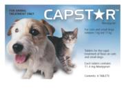 Buy Capstar Flea Treatment Online-vetsupply