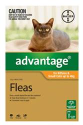 Buy Advantage For Cats - Flea Control & Tick Treatment for Cats