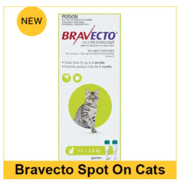 Buy Bravecto spot-on, flea and tick treatment for cats-VetSupply