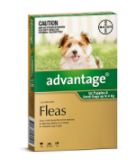 Buy Advantage Spot-On Flea Treatment for Dogs Online - DiscountPetCare