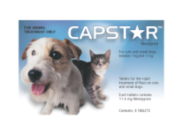 Capstar Oral Flea Treatment For Dogs Online - DiscountPetCare