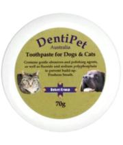 Buy Dentipet Dog & Cat Chicken Flavour Toothpaste Online- VetSupply