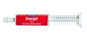 Buy Vetsense Energel for Dogs and Cats  Online - VetSupply
